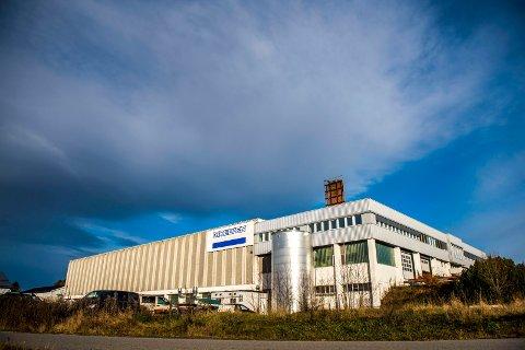 Moelven permitterer 80 ansatte ved Moelven Byggmodul på Hjellum.