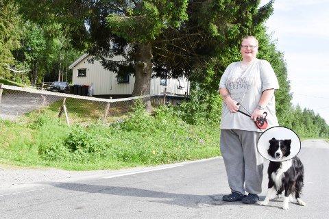PÅKJØRT: Akkurat her, rett nedenfor huset i Kvemyrvegen, på vegen opp til Nybygda, ble Max (5) påkjørt Eier Kristin Bjerken (35) fra Moelv forteller at hun var helt i sjokk.