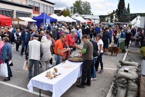 Innlandsmarkedet i Moelv 2018 - folk på torget foran kommunestyresalen.