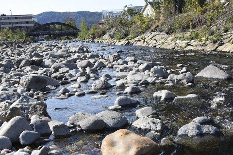 Ingen napp: Manglende vannføring i Brumunda har ført til at det ikke har blitt tatt ørret der i år. Sviktende salg av fiskekort gir store økonomiske tap. FOTO: Asgeir Høimoen