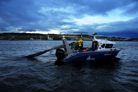 FORBI TINGNES: Trålposen slippes ut bak båten som her setter kurs mot Furnesfjorden. Trålingen foregår stort sett på kveld og natt, hele Mjøsa rundt. Foto: Knut Erik Landgraff