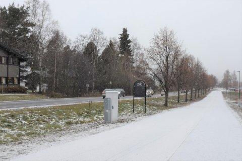 DET SNØR: Fredag ettermiddag begynte snøen å drysse ned i Brumunddal.