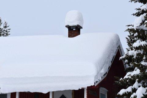 PASS PÅ: Slik så denne hytta ved Prestsætra i Furnes almenning ut lørdag.