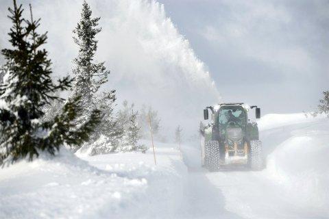 Mandag rygget Trond Sverre Hagen innover Ringsakerfjellet for å gjøre vegene kjørbare igjen. Noen steder var hele vegen fokket igjen, cirka 1,4 meter med snø, forteller han.