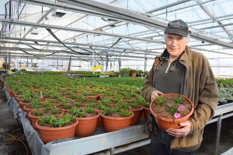 Superveteran: Lars Aamot (78) har vokst opp og levd med gartneriet på Brøttum. Nå er han klar for ny sesong. Det samme er tre andre lokale gartnere i Ringsaker med nesten like lang fartstid som brøtningen.