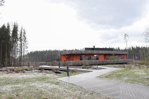 Snauhogd: Skogen som tidligere har omringet Prøysenhuset måtte etter vindfall hogges ned for sikkerhetens skyld.