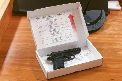 VÅPENET: Det var denne pistolen, en Makarov, som Janne Jemtland ble skutt med.
