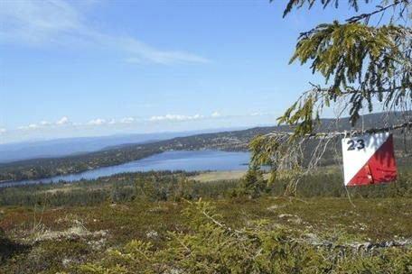 Turorientering: Ringsaker Orienteringsklubb har lagt ut poster både i bygda, på «Skautraver'n», og på fjellet, på Sjusjøen og Nordseter.