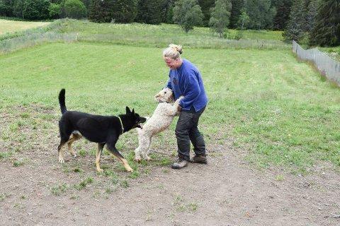 GLEDE: Alaska huskyen Alaska og wheatenterrieren Blanca kaster seg over midlertidig matmor Linda Skaansar Enger (27) på Mesna Hundehotell. Se flere bilder i bildekarusellen.