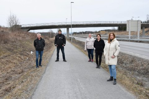 SIER NEI TIL BOMMER: Disse fem hedmarkingene representerer fem husstander som til sammen kan få økte utgifter på over 90 000 kroner i året, dersom det blir bommer på Furnesvegen. Fra venstre: Terje Bjørge Paulsen (58) fra Gaupen, Bjørnar Molstad (37) fra Bergshøgda, Mia Henriette Utheim Sandnes (35) fra Brumunddal, Line Ringvold (49) fra Bergshøgda og Trine Grande Arnesen (38) fra Ridabu.