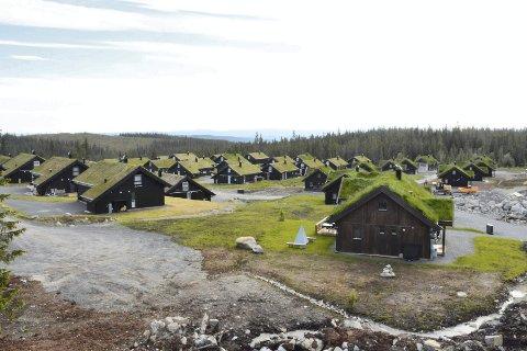 Muligheter: Det er om lag 7200 hytter i Ringsaker. Leie av hytte blir stadig mer aktuelt for mange.  Står hytta di tom, er det mye penger å tjene hos Ringsaker Blad Hytteopphold.
