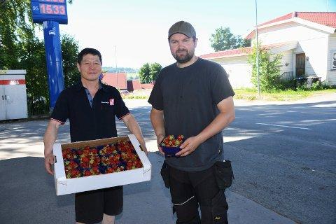 Kortreist: Den ferske jordbærbonden Lars Erik Nordhagen leverer hovedsaklig til Bama, men forsyner også noen lokale virksomheter med bær. Blant annet YX-stasjonen i Tingnes med Wang Yin Li i spissen.