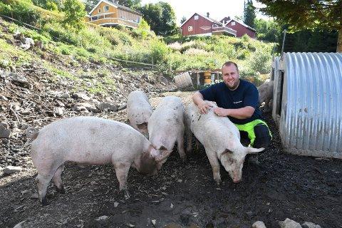 Sett av mange: Kjetil Varhaug på Brøttum er en av få i Ringsaker som driver med utegris.