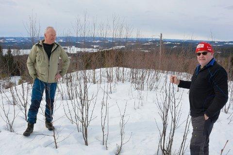 Har en plan: Mathias Neraasen (t.h) og Per Olav Tøraasen i Ringsaker almenning vil jobbe for å klargjøre tomter i Åsmarka og Mesnali. Her står de på et aktuelt felt i Åsmarka bare et drøyt steinkast fra sentrum med flott utsikt.