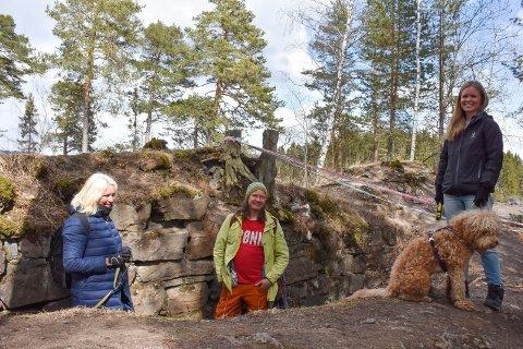 FRYKTER FOR RUIN: Siri Standal, Thomas Eriksen og Camilla Lillehagen fra Ringsaker MDG ønsker tiltak for å bevare ruinene av Mjøskastellet på Steinsholmen.