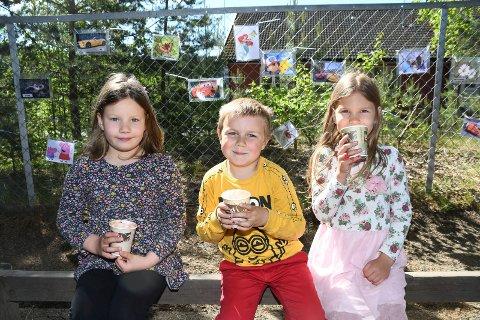 Går ned på høykant: Eya Eneva, Casper Hesthagen og Sabine Utstrisova i Moelv barnehage koser seg med smoothie laget av frukt og grønnsaker fra Kiwi.