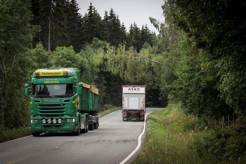 SUBBER BORTI: De høyeste kjøretøyene på veien klarer så vidt å passere bjørka uten å treffe den.