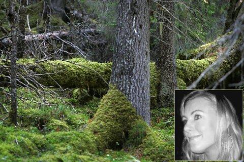 Miriam Tessem Strøm