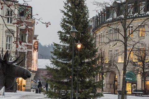 Høyt i toppen: Det blir tenning av både juletre og julegater lørdag. Foto: Frode Johansen