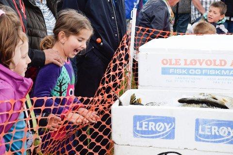 Lajla syntes tydelig at fiskene var fascinerende, selv om hun og faren ikke var med i konkurransen.