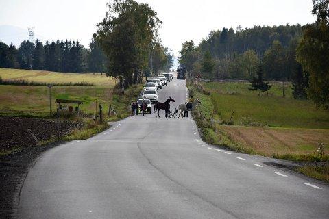 Denne veien har gått ut på dato, skriver Åsmund Martinsen.