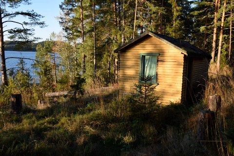 Plan- og miljøstyret i Hole på befaring i hyttesak i Utstranda 229 på Sørbråten.