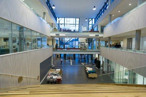 Nye Hønefoss videregående skole: Fellesområde