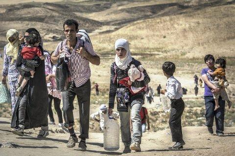 MARKERES: Verdens flyktningdag markeres i Søndre park mandag. Dette er flyktninger på vei ut av Syria.Foto: Flyktninghjelpen