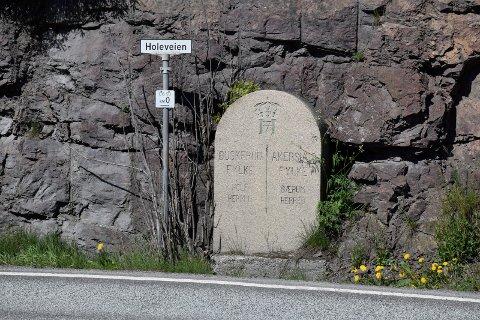 Politikerne i Ringerike mener at Buskerud bør se mot Akershus hvis Buskerud skal slå seg sammen med andre fylker.