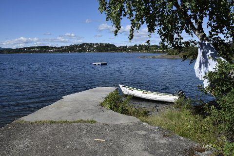 Vannkvaliteten i Steinsfjorden ser ut til å ha blitt bedre.
