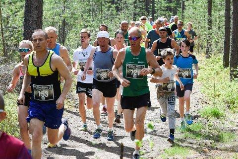 Arrangøren håper på 200 deltakere i finværet som er meldt lørdag. Også i fjor var det strålende vær og høy temperatur på løpsdagen.