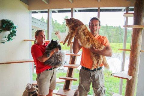 Kristi og Øystein Myhre driver Muhres kattehotell på Tyristrand. Nå i høysesongen er 80 katter innlosjert på hotellet, blant annet Smokey og Oliver.