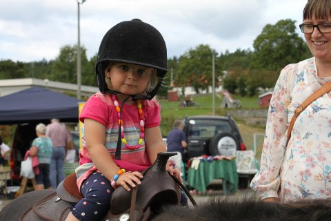 Hole Frivilligsentral har i år satset på et eget område til barna.
