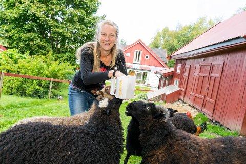 LEVER LANDLIG: Liza Franke mater villsauene på småbruket ved Storetjern i Jevnaker. Her er familien selvforsynt med det meste.