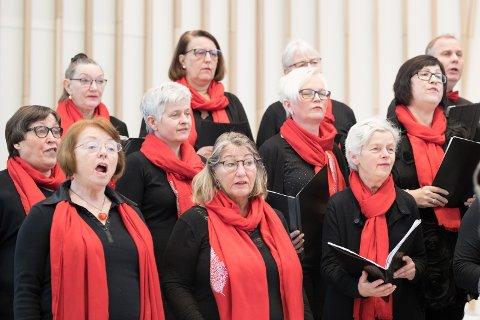 SANGGLEDE: Her synger koret i Hønefoss kirke. Bildet er tatt ved en tidligere anledning.