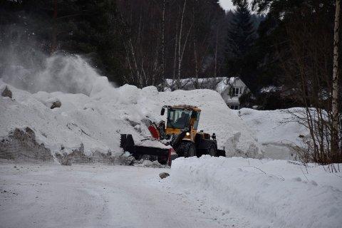 Petersøya: Her lagres store hauger bortkjørt snø fra gater og torg i Hønefoss.