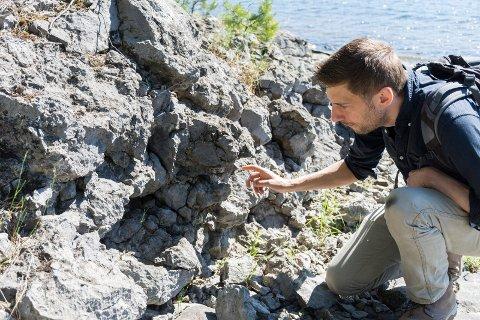 KORALLREV: På Lemostangen finner du rester av så vel korallrev som andre skapninger som levde i havet. Gijs Henstra har brukt mange timer her i arbeidet med boken om Ringerikes geologi.