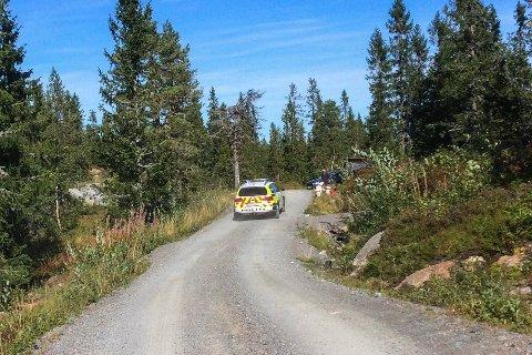 UNDERSØKER: En mann omkom under trefelling på Veslefjell søndag. Politiet etterforsker rutinemessig saken.