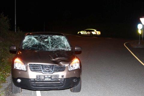 En elgkalv døde i sammenstøtet med denne bilen. To personer sendt til legevakt for sjekk, men skal ha vært fysisk uskadet. Ulykken skjedde på riksvei 7 ved avkjøringen til Ask/Elvenga like nord for Ve-krysset.