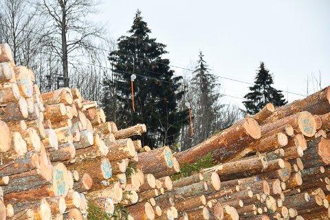 I VEIEN: Store mengder tømmer hindrer snøproduksjonen i Modum skisenter.