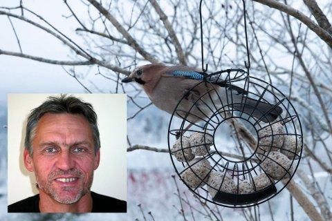 SKREMT: Ornitolog Morten Ree sier det ikke er bevist at fugler dør av sjokk når det fyres opp raketter. - Men det er ingen tvil om at de blir stresset og i flukt kan kræsje og dø, sier han.