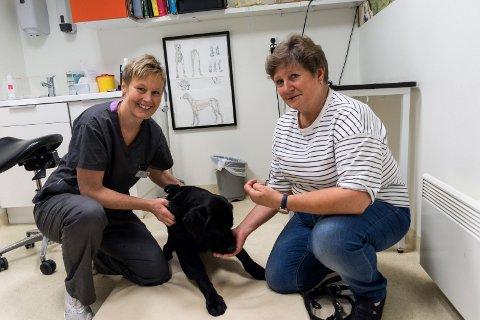 FIKK BEHANDLING: Veterinær Elin Kristiansen og hundeeier Aud Askim med sju måneder gamle Balto, som fikk PRP-behandling etter en operasjon nylig.