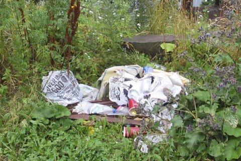 SØPPELET FLYTER: – Vil kommunen ta grep og sette opp en søppeldunk på parkeringen ved Mørkgonga? spør Marius von Glahn.