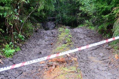 Politiet tror de nå nærmer seg en bekreftelse på identiteten på den døde mannen som ble funnet i denne skogen på Verp.