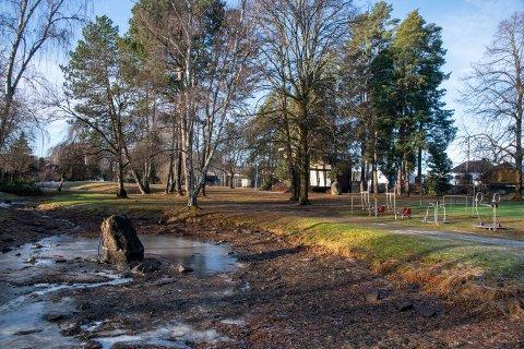 SIKTET FOR RAN: Hendelsen skal ha skjedd her i Søndre park i Hønefoss.