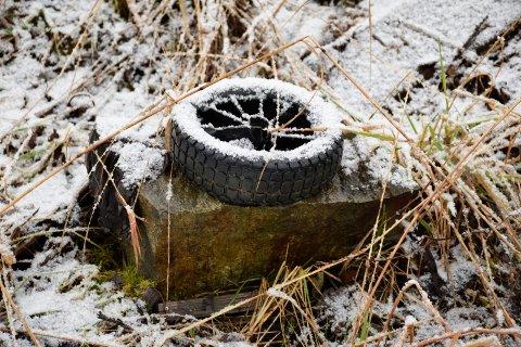 DEKK: Dette dekket er noe av avfallet som ligger på festetomta på Nakkerud.