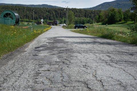 HULLETE: Selteveien trenger sårt en opprusting. Men det blir ikke i år, dersom kuttene i Ringeriksbane-budsjettet opprettholdes.