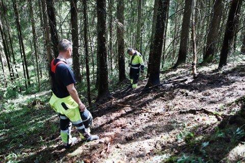 SKOGBRANN: Rundt seks kvadratmeter skogbunn brant  langs Ramsrudhellinga nylig. Nå har den lokale skogbrannfaren økt.