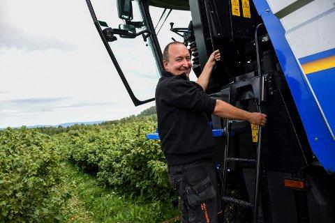 SOLBÆRBONDE: Thomas Ruud på vei opp i solbærplukkemaskinen, før han høster inn bærene fra flere rader ved Fjeld hagebruk.