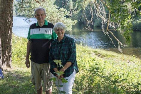 BASSENG: Politikerne Lise Bye Jøntvedt (H) og Runar Johansen (H), foreslår at bassenget skal ligge mellom Petersøya og fastland.